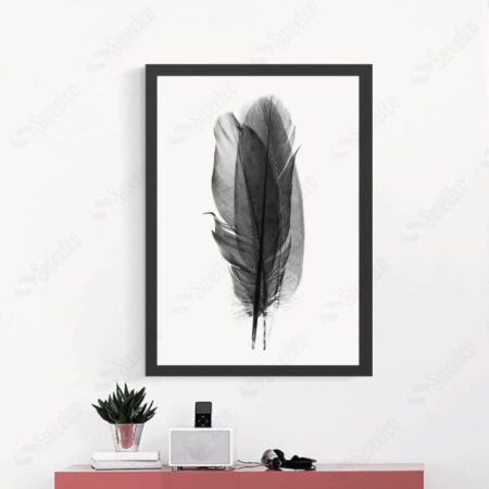 Feather Shadow