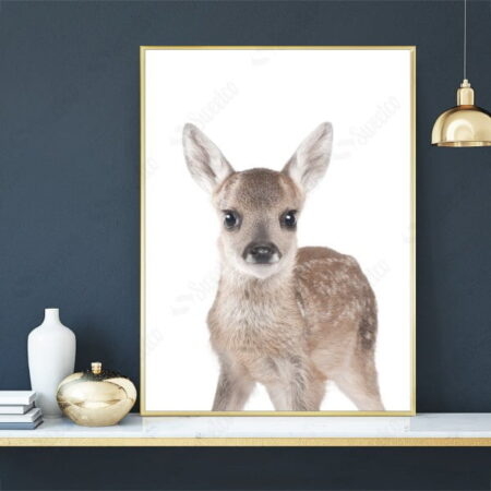 Roe Deer XL