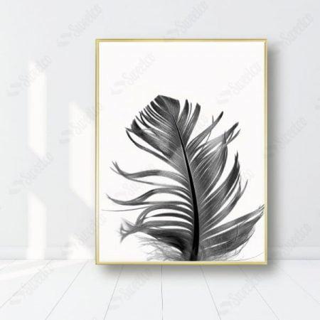 Black Feather XL
