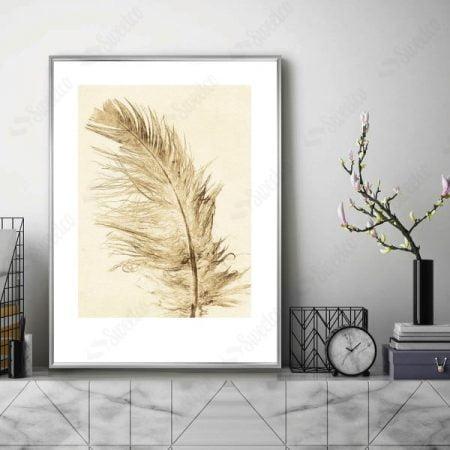 Beige Feather XL