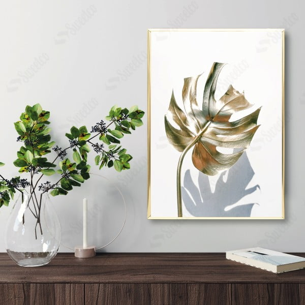 Golden Monstera and Shadow