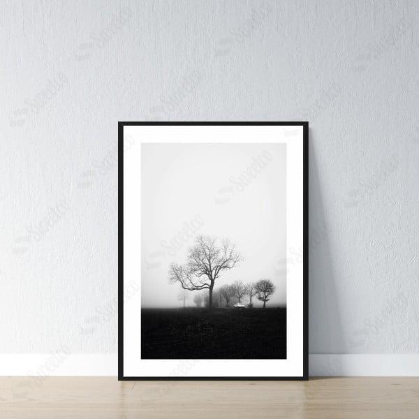 Black Nature View