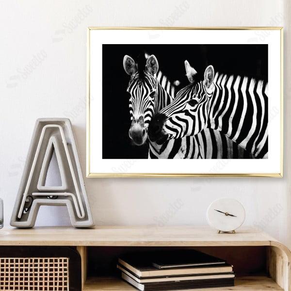 Twice Zebra