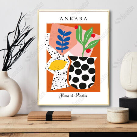 Ankara / Fleurs et Plantes