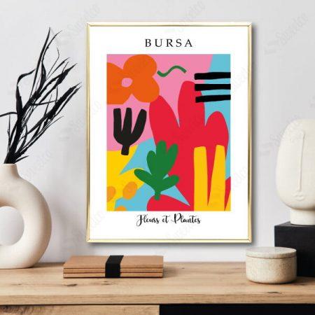 Bursa / Fleurs et Plantes