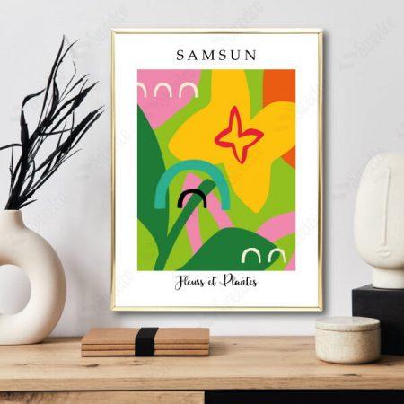 Samsun / Fleurs et Plantes