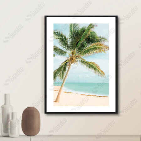 Cocos Palm and Beach