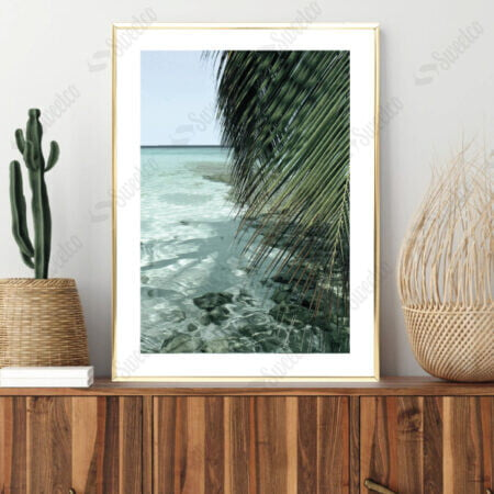 Palm and Ocean No2
